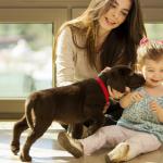 Ways of Saving Money on Pet Care