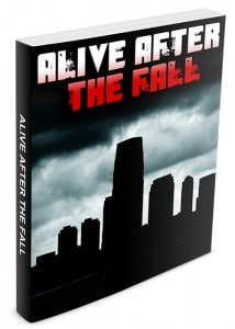 Alive After The Fall eBook