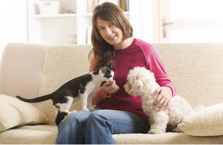 How to Make Money As A Pet or House Sitter