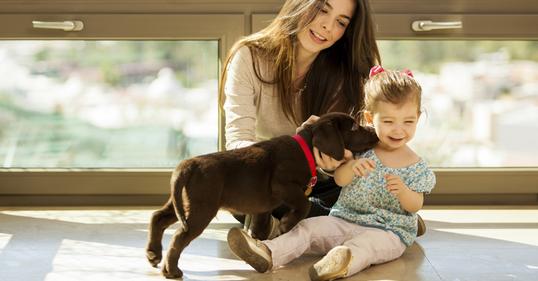 saving money on pet care