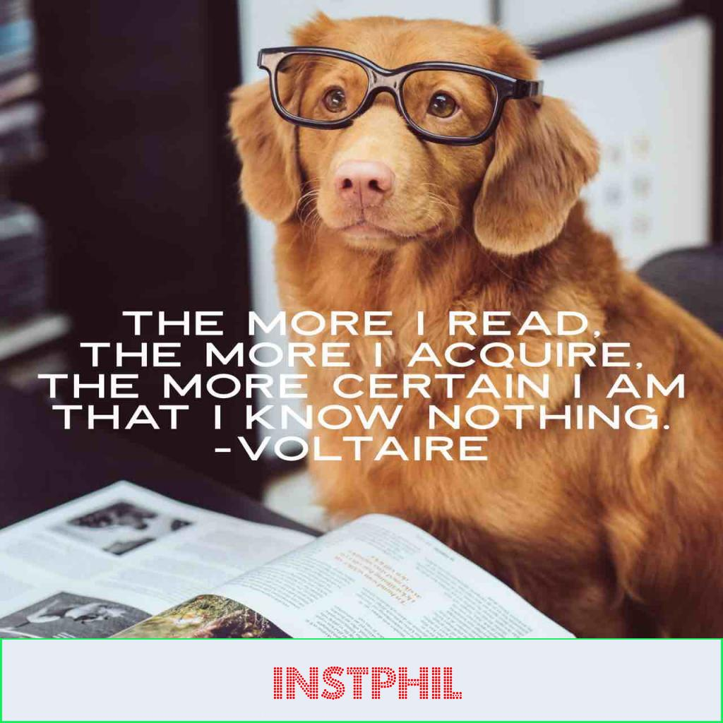 """""""The more I read, the more I acquire, the more certain I am that I know nothing"""""""