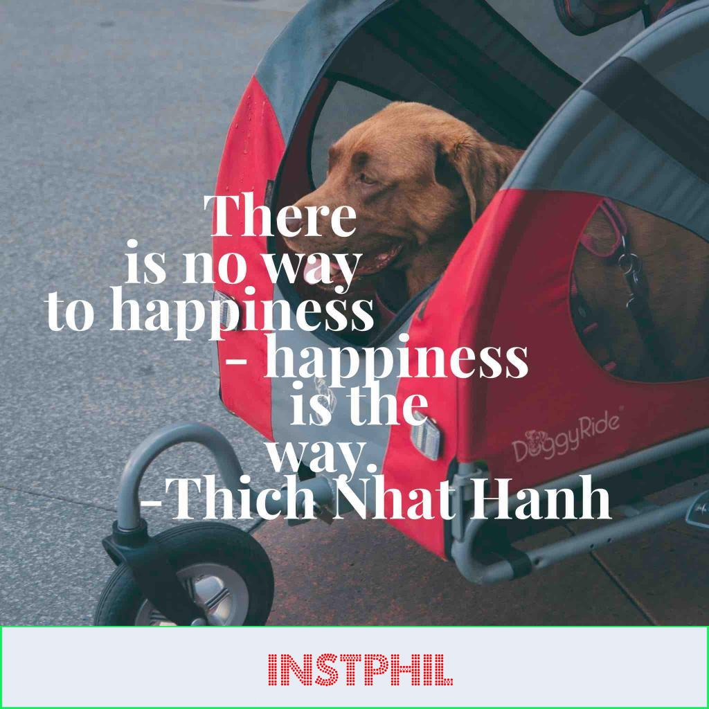 """Thich Nhat Hanh quote """"There is no way to happiness — happiness is the way"""""""