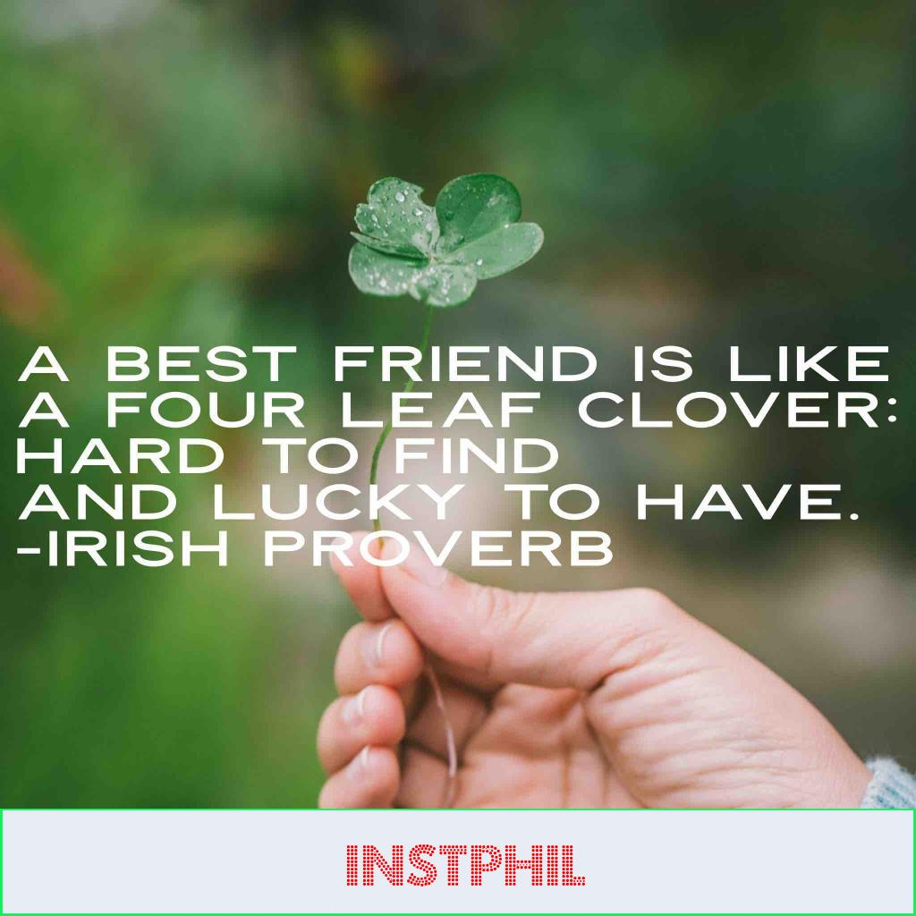 """Irish Proverb """"A best friend is like a fourleaf clover: hard to find and lucky to have"""""""