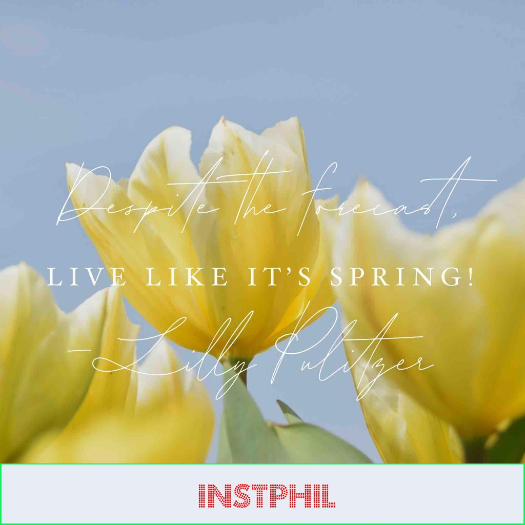 """Lilly Pulitzer quote """"Despite the forecast, live like it's spring"""""""