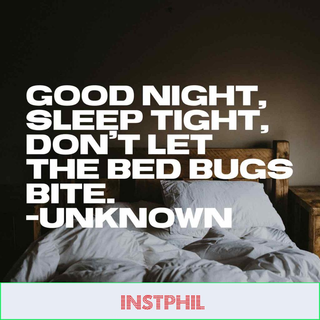 """Unknown quote """"Good night, sleep tight, don't let the bed bugs bite"""""""