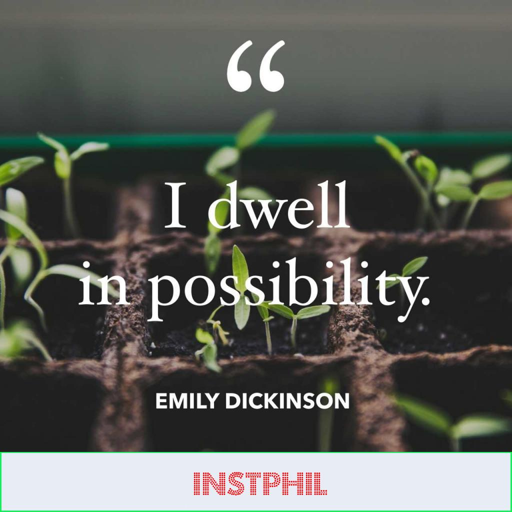 "Emily Dickinson hopeful quote ""I dwell in possibility"""