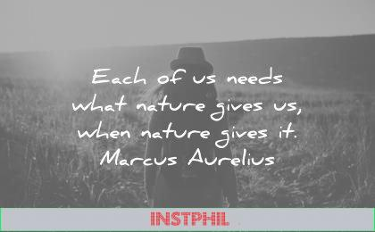 marcus aurelius quotes each needs what nature gives when wisdom