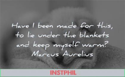 marcus aurelius quotes have been made lie under blankets keep myself warm wisdom dog