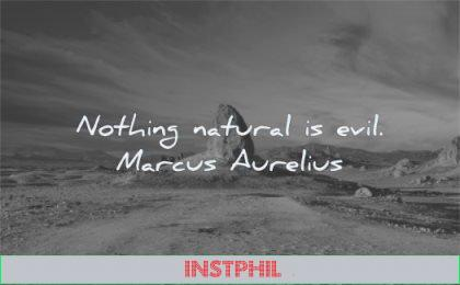 marcus aurelius quotes nothing natural evil wisdom rock nature